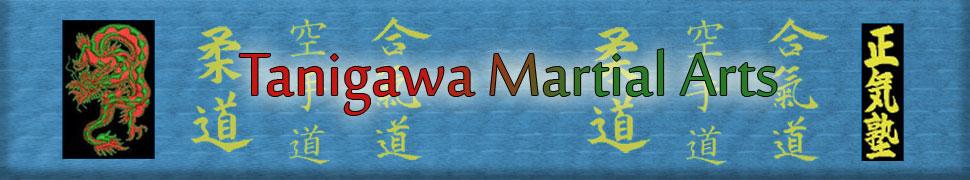 Tanigawa Martial Arts Banner
