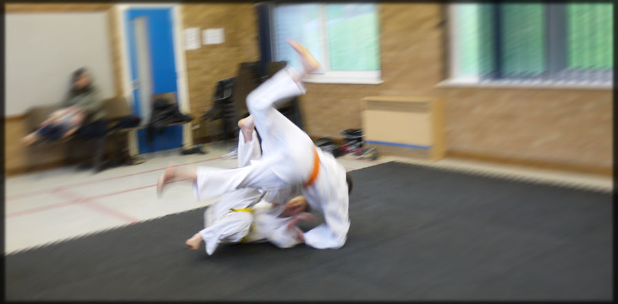 Judo Throw Roll